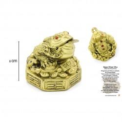 Frog Kaeru Prosperity