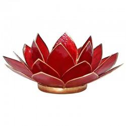 Red lighting lotus