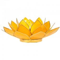 Yellow Lotus Lighting