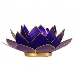 Lotus Indigo Lighting